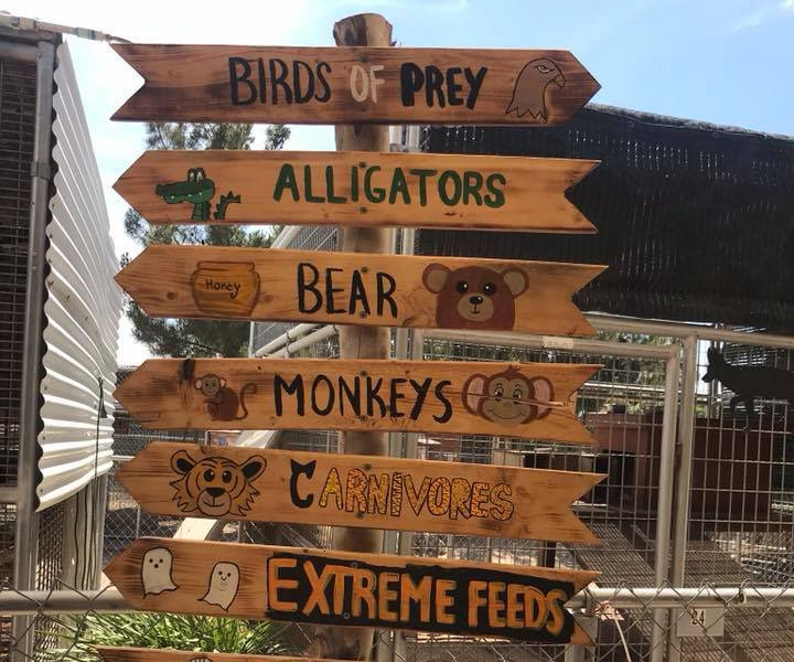 Wooden direction sign board of animals at a Preschool & Daycare Serving Hesperia, CA